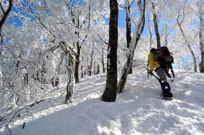 樹氷の華咲く 冬の鈴鹿・綿向山へ