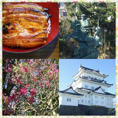 小田原から塔ノ沢温泉、箱根へ。with母親  Ver.1は小田原。