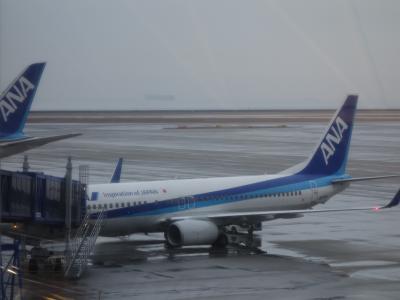 セントレアから羽田までボーイング737-800に乗りました。
