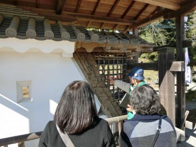 施設暮らしの義母を連れ、小田原~伊豆高原へ。その1  小田原城へ ボランティアガイドさんの詳しい説明に大満足!