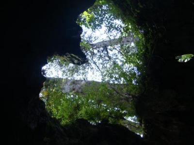 屋久島  2009年7月