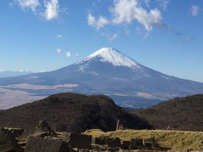 のんびり箱根1泊2日:温泉と美術館巡り