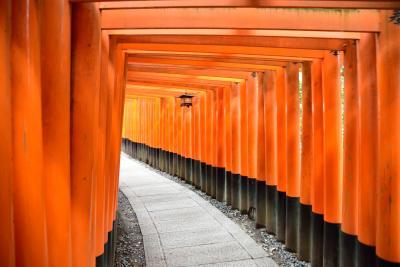 2泊3日、大阪泊京都小旅行 その3 「チャリンコで寺社巡り。伏見稲荷大社」