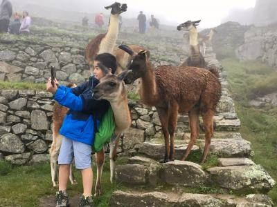 10歳の息子と行くペルー&ボリビア旅行(ペルー編)