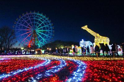 高3の娘とバレンタイン・デート☆闇夜の魔法 Winter Illumination☆彡