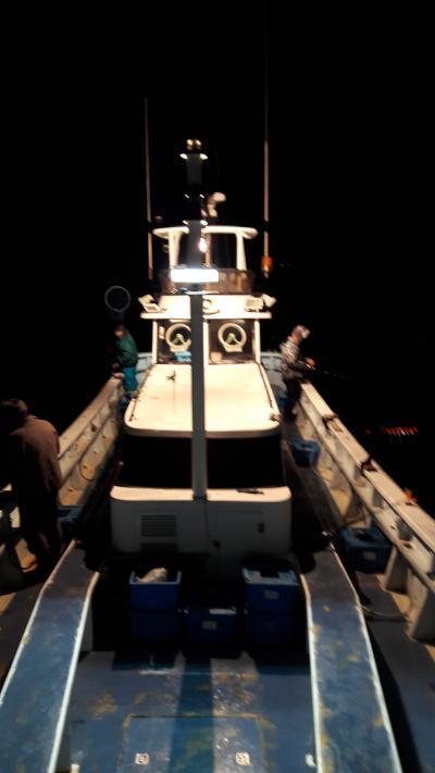 西伊豆戸田港から出船!大瀬崎沖の夜釣で美味しいヤリイカ20匹オーバーGET!