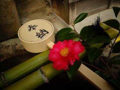 奈良さんぽ:新薬師寺・白毫寺。春日大社まで行くならちょっと足をのばして