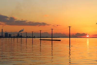 春を求めて南房総へ、ついでに江川海岸のリベンジ