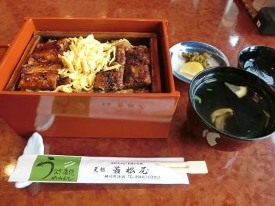 <2>雪が舞い散る九州北部へ、ランタンフェスティバル&美味しもの食べ巡りの旅(福岡編)