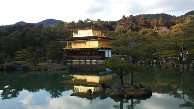 旅行商品「日帰り1day京都スペシャル」で行く京都満喫の旅(パート2)