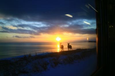 北海道フリーパスで冬の一人旅7泊8日+1(2日目 帯広⇒納沙布岬⇒釧路)