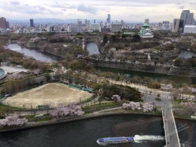 大阪城に  桜があるときぃ~( ´ ▽ ` )   ないときぃ~(T_T)   &   コスパ最高のフレンチ 「ダン・ル・シエル」