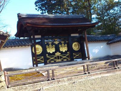 京都 醍醐の花見 秀吉が愛した醍醐寺