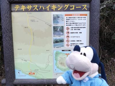 グーちゃん、伊豆大島へ行く!(大島公園で椿林太郎を見る!?編)