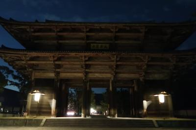 奈良公園ナイトウォーク