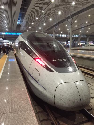 ピーチで行く初中国と鉄道の旅2日目 上海鉄道旅 Part2