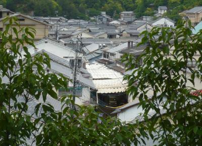 広島・宮島の路上で気が向くままに観察