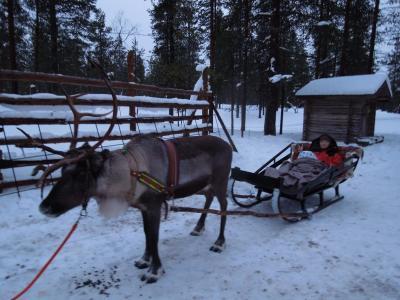 フィンランドにオーロラを見に行ったのですが…