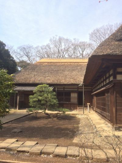 東京散策(江戸川区探訪その3)