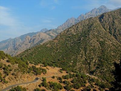 ★コルシカ島車旅 -(3)カルヴィからサント山(チント山)麓のアスコへ日帰りで