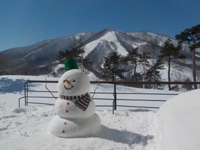 小学生も楽しめる♪ SKI・バイキング・温泉 新幹線旅!