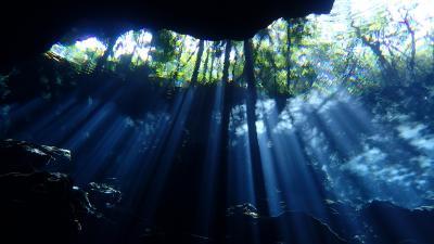 今年の初潜りはメキシコ・コスメル島、そして夢のセノーテで!!(セノーテ!!プラヤ・デル・カルメン滞在編)