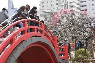 春をたずねて 亀戸天神・深川不動尊・富岡八幡を歩く。