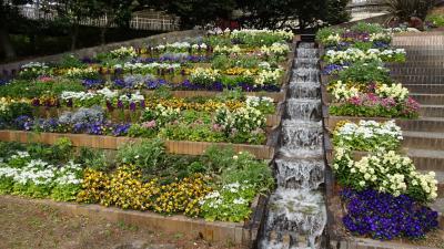 早春の服部緑地公園(1) 緑化植物園。