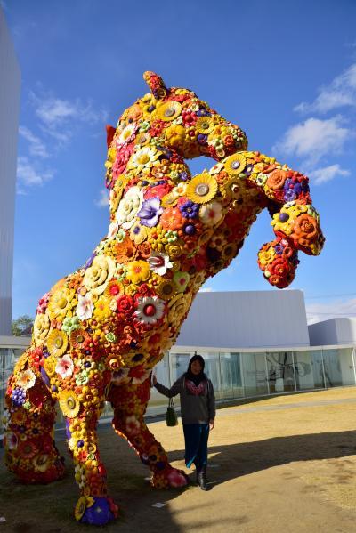 十和田市現代美術館と、鶴の舞橋を見る結婚記念日の旅 1泊2日 その1 十和田市現代美術館