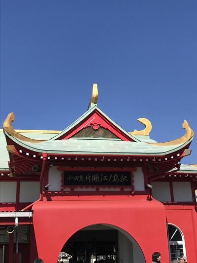 懲りもせず、ロマンスカーで江ノ島水族館。