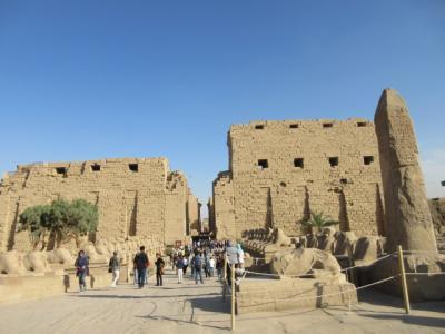 行って良かったエジプト夢紀行 (3) カルナック神殿、ルクソール神殿 (クルーズ船泊)
