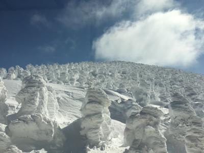 9年ぶりのスキーin蔵王 樹氷と温泉を満喫♪