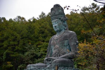 十和田市現代美術館と、鶴の舞橋を見る結婚記念日の旅 1泊2日 その2 昭和大仏から浅虫温泉