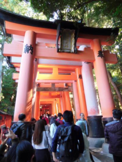 姉妹で京都