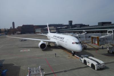 JALパック 旅行記 魅力のスペイン周遊10日間 1日目 成田 → ヘルシンキ → マドリード