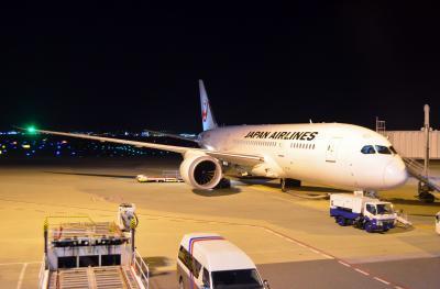 今年2度目のバンコク里帰り Part 2 - JAL 関空→バンコク