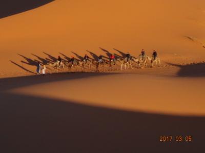 2月27日~3月12日モロッコ旅行 その3 砂漠ツアー編