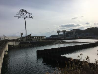 志戸平温泉「志だて」に泊まって陸前高田に行く。
