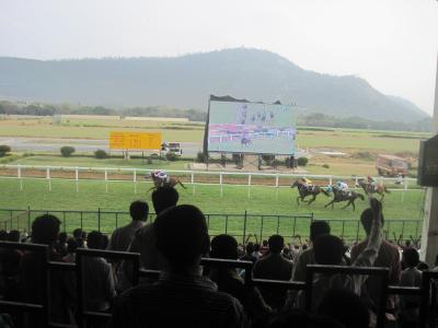 2016 ローカルっぽさが心地いいマイソール競馬場はインド競馬なのに快適でした!