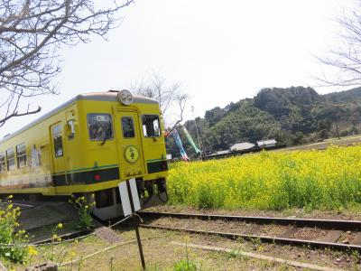 タケノコ買いに大多喜へ。お昼は、勝浦タンタンメン食べよう!