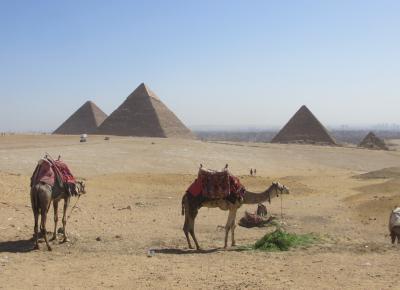 直行便で行くエジプト(その2:アブ・シンベルからカイロへ)