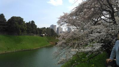 春を愛でる~マダムの国立新美術館・神保町・千鳥ヶ淵散歩~
