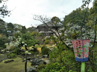 2017年刈谷市亀城公園