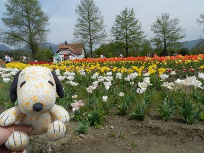 2016年4月◆『ブルーメの丘』でチューリップを堪能しました~!♪(滋賀県日野町)
