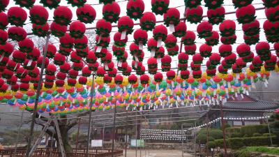 江華島・金浦・坡州                                                     ちょっとだけソウル春の韓国旅行《part1》
