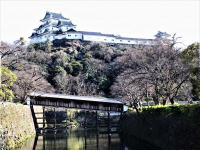 桜と春の味覚を求めて紀州路へ!