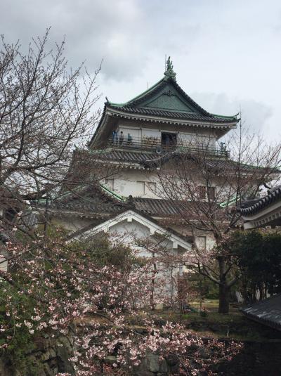 思い立って和歌山ひとり旅②~紀三井寺と和歌山城~