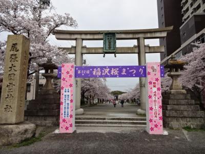 稲沢桜まつり