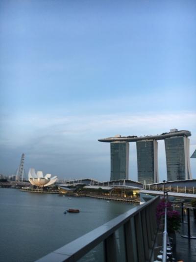 今年もJALに乗ってシンガポール1-1