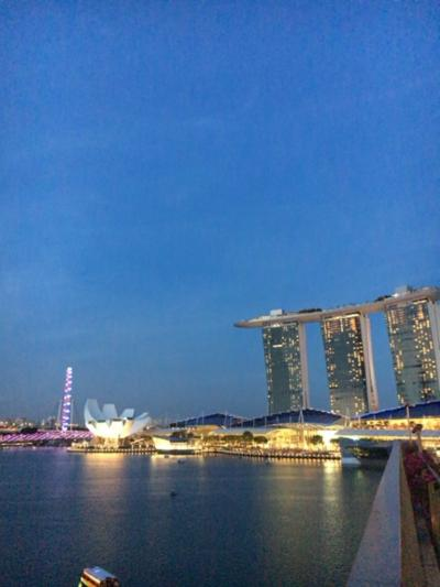 今年もJALに乗ってシンガポール1-2